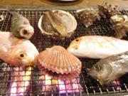 2007年島根県隠岐郡海士町(あまちょう)の旅のまとめ
